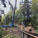 bridge in Port Angeles Rainforest being laid in place by Omega Morgan 500-ton leibherr crane